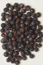Jałowiec (Juniperus L.) - 50 g cały