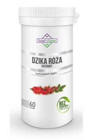 Dzika róża ekstrakt (4:1) 500 mg 60 kaps.